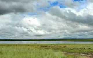 Озеро сватиково дус холь в туве отдых на озере
