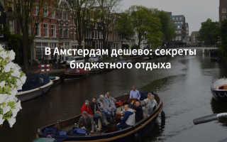 Отдохнуть в амстердаме бесплатно