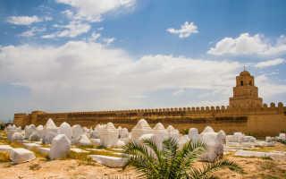 Когда лучше отдыхать в тунисе сезоны и погода по месяцам