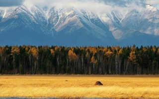 Туры в монголию из москвы