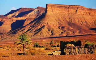 Сколько алкоголя можно ввозить и вывозить из марокко