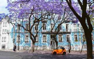 Популярные вопросы туристов о лиссабоне