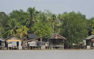 Особенности отдыха на острове калимантан