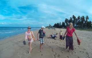 Майские каникулы на шри ланке