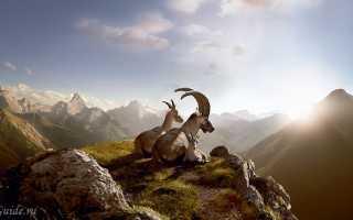 Популярные вопросы туристов о швейцарии