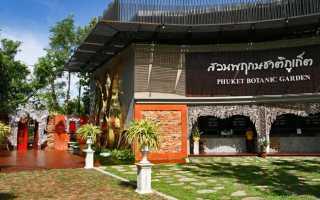 Сад роз таиланд пхукет