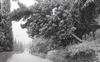 Какая погода в крыму зимой