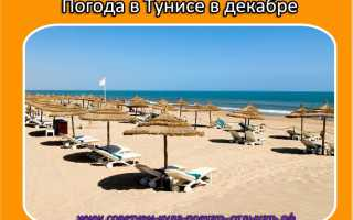 Поездка в тунис в декабре погода цены рекомендации