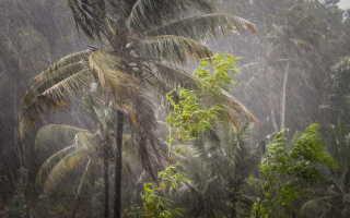 Погода на фукуоке в июле сезон дождей