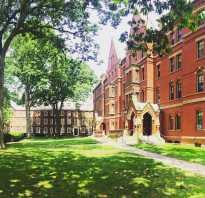 Лучшие университеты америки