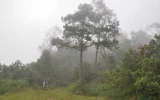 Национальные парки вокруг чиангмая