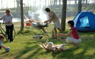 Куда поехать на шашлыки в ленинградской области летом