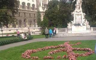 Как организовать тур по европе самостоятельно рассказы о вене