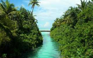 Погода на курортах мальдив