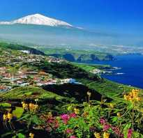Отдых в канарские острова испания 2020