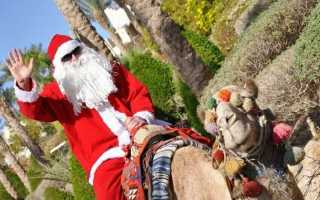 Какие развлекательные программы в отелях египта на новый год