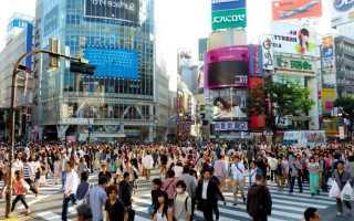 Как иностранцу поступить в японский вуз