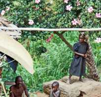 Отзывы туристов путешествие по экваториальной африке