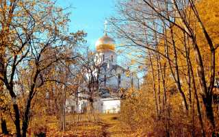 Куда сходить в санкт петербурге осенью лучшие парки