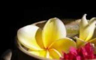 Какие спа процедуры предлагают на бали