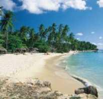 Особенности отдыха на тринидад и тобаго