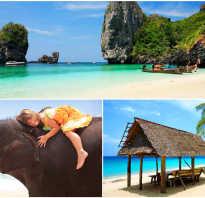 Отзывы туристов об отдыхе на пхукете таиланд