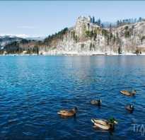 Словения отзывы туристов